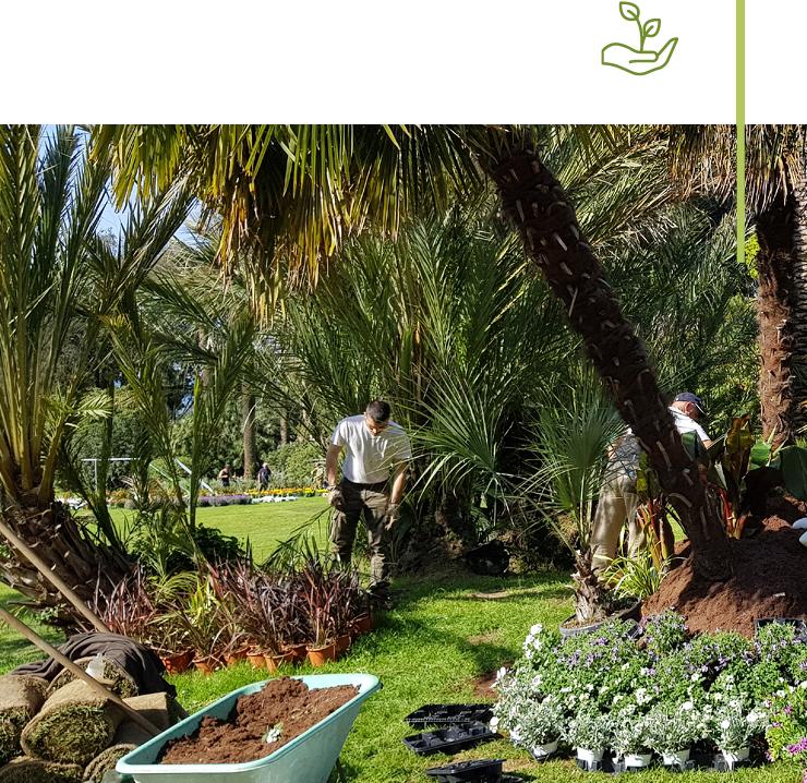 Manutenzione di giardini, Studio Paesaggistico MaMa